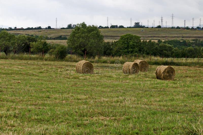 Sugrörfält med runda torra höbaler framme av bergskedja nära staden Dupnitsa royaltyfri foto