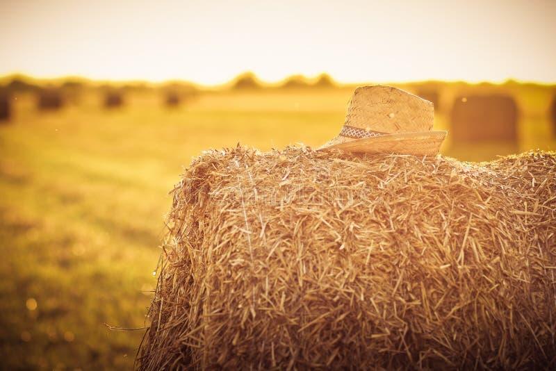 Sugrörhatt på en packe av hö på ett fält i sommartid arkivfoto