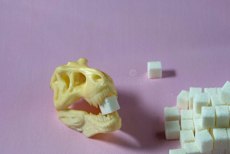 Suiker en dinosaurusschedel schadelijk voor gezondheid royalty-vrije stock foto