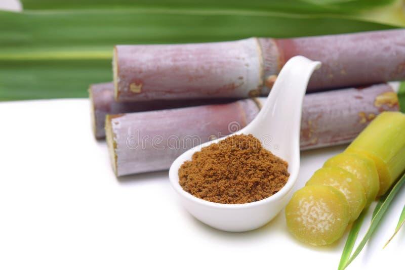 Suikerriet met bruine suiker royalty-vrije stock foto