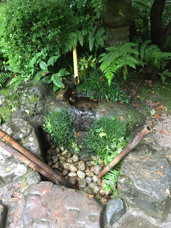 Suikinkutsu, ou 'caverna do koto da água ', no jardim botânico de Kyoto no verão imagem de stock