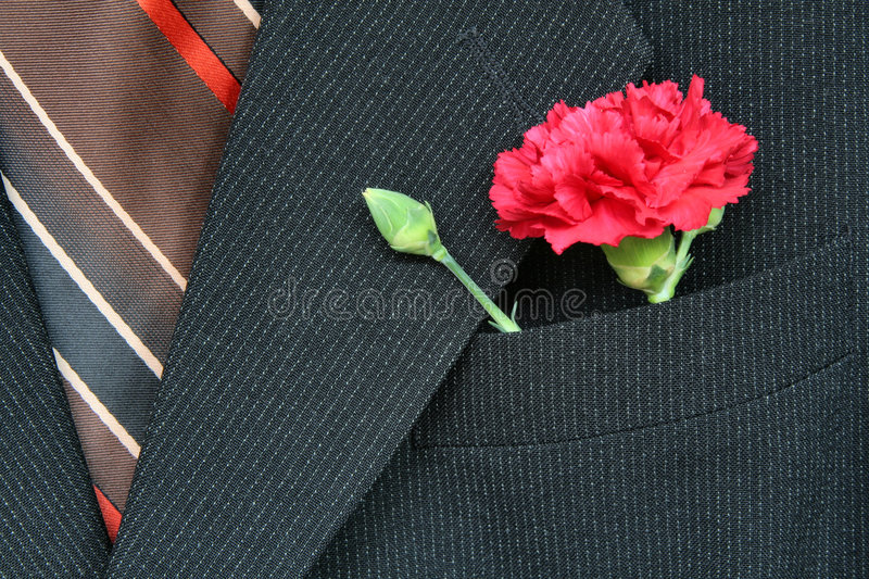 Suit and carnation