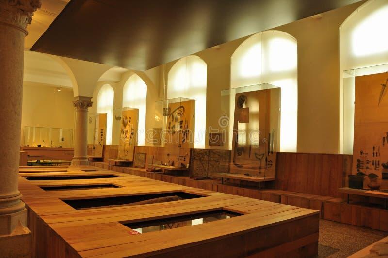 Suiza: exposición en el Museo Nacional suizo en ricos del ¼ de ZÃ fotos de archivo