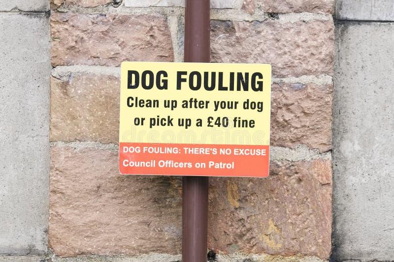 Sujar do cão limpa após seu cão ou enfrenta um sinal fino imagens de stock royalty free