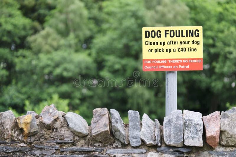 Sujar do cão limpa após seu cão ou enfrenta um sinal fino fotos de stock royalty free