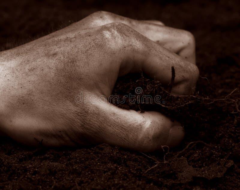 Sujeira de agarramento da mão fotografia de stock royalty free