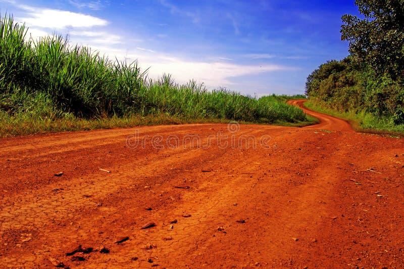 Sujeira-trilha africana. imagem de stock royalty free