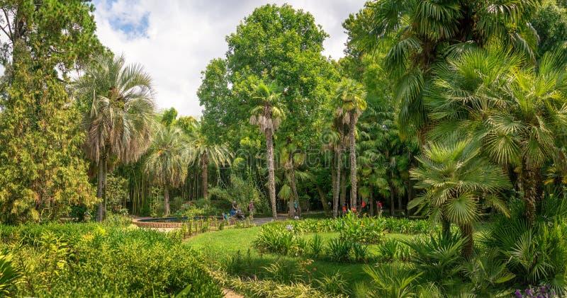Sukhumi botanical garden. Sukhumi / Abkhazia 23 August 2019 stock photography