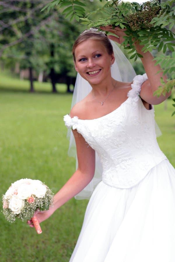 sukienka ślubna panny młodej white zdjęcia royalty free