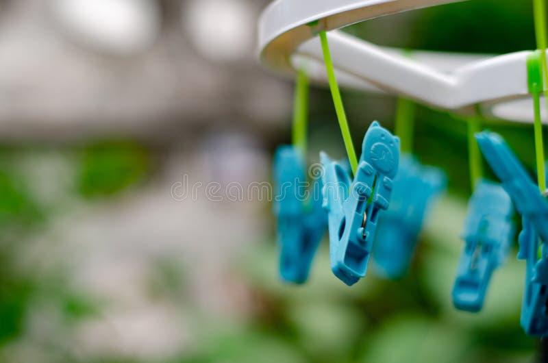 Sukienny kahat zieleni kot fotografia stock