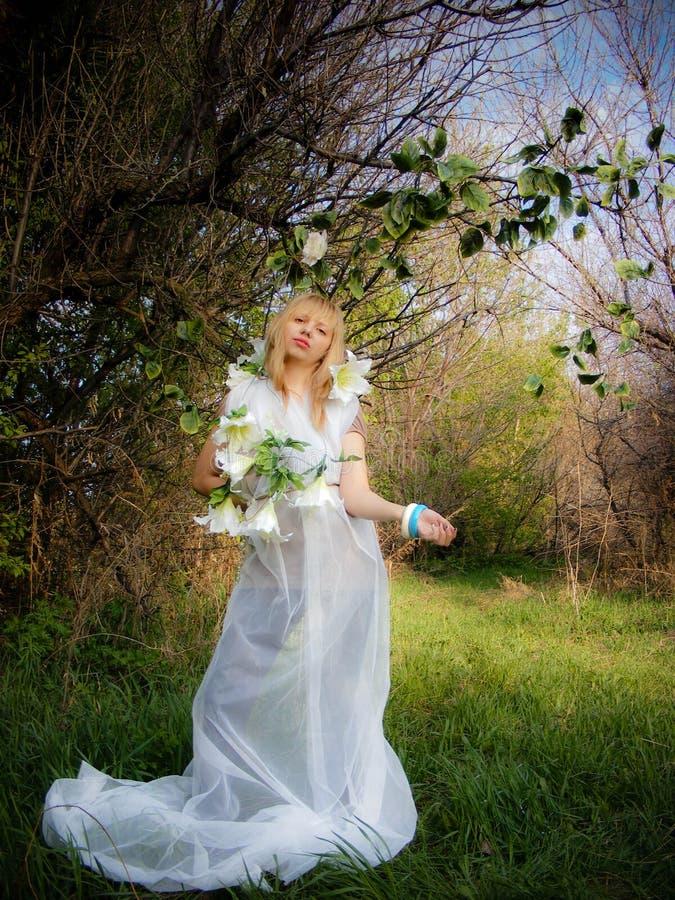 suknia kwitnie dziewczyny biel drewna fotografia royalty free