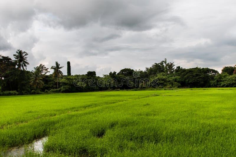 Sukothai historical park, Unesco world heritage royalty free stock images
