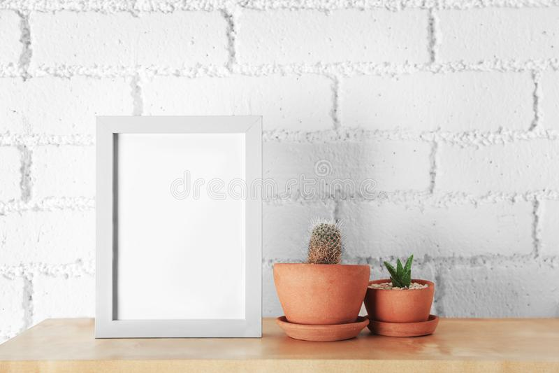 Sukulent i kaktus z fotografii ramą obraz royalty free