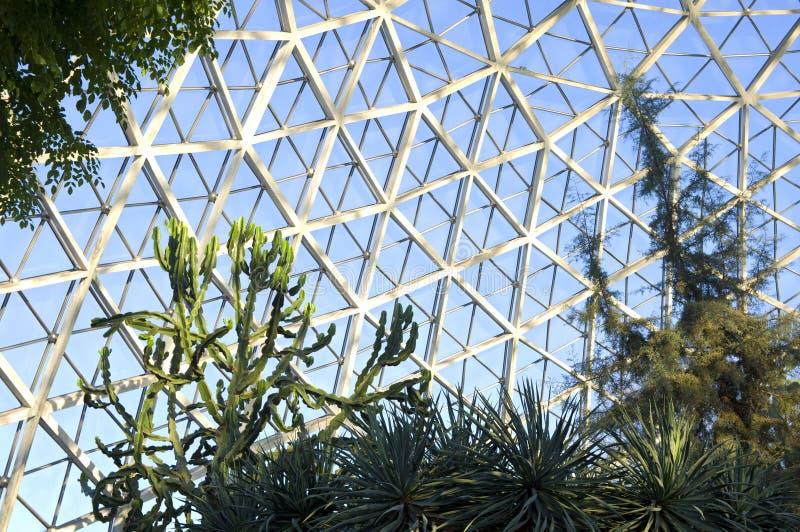 Sukulenty i kaktus przy ogród botaniczny fotografia stock
