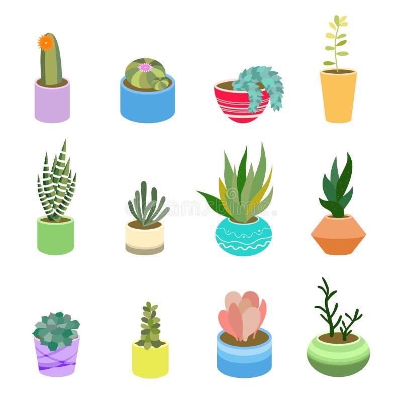 Sukulenty i kaktus w garnkach różni kolory Śliczni płascy kreskówka elementy dla domowego projekta Wektorowy ilustracyjny ustawia ilustracja wektor