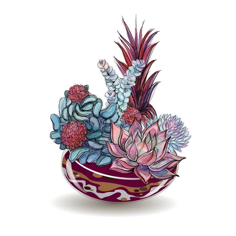 Sukulenty w szklanych akwariach czarny piasek Kwiatów dekoracyjni składy grafit akwarela wektor royalty ilustracja