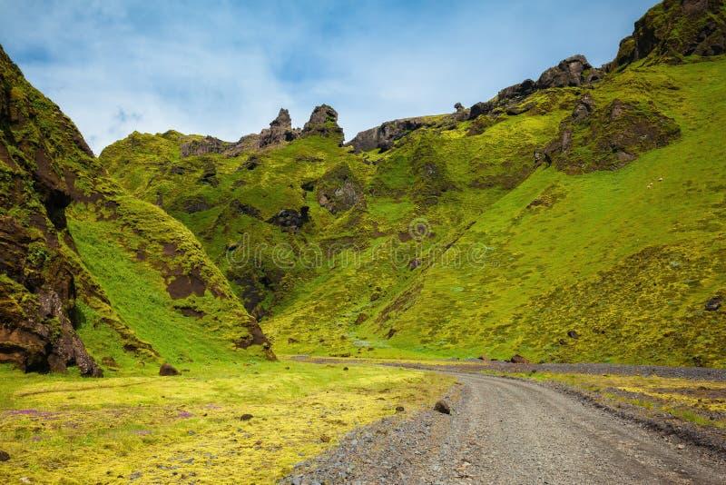 Sul canyon c'è strada non asfaltata fotografie stock libere da diritti