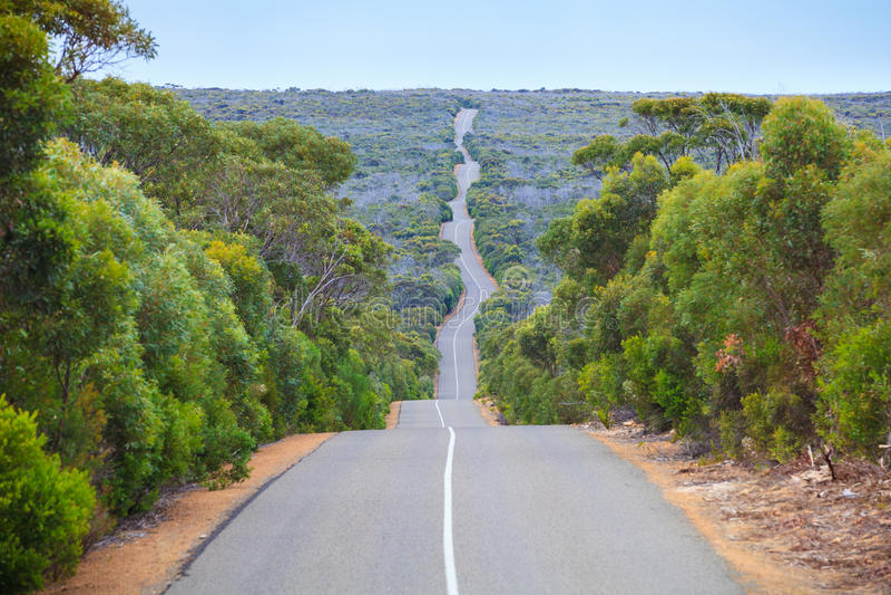 Sul da Austrália da estrada da ilha do canguru foto de stock