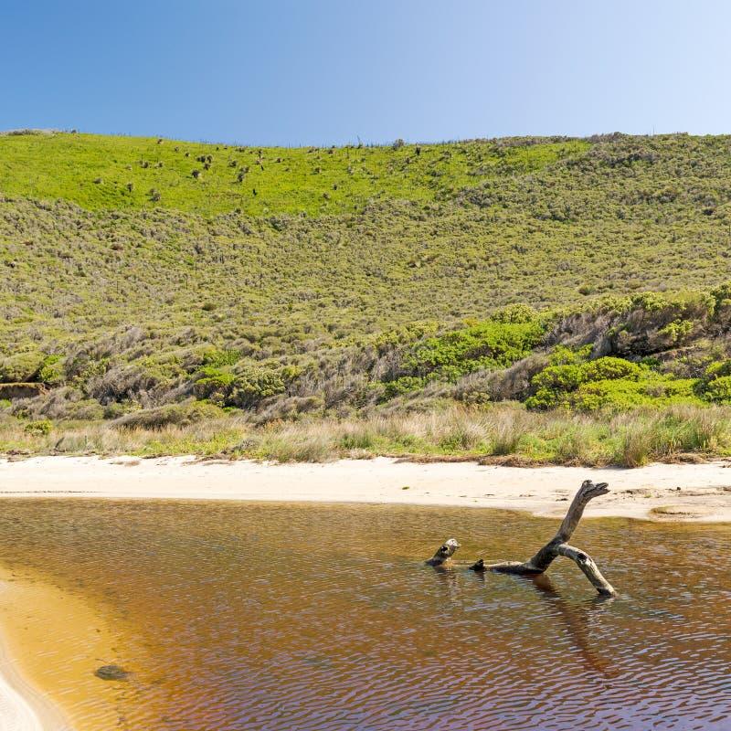 Sul da Austrália da península de Fleurieu imagem de stock royalty free