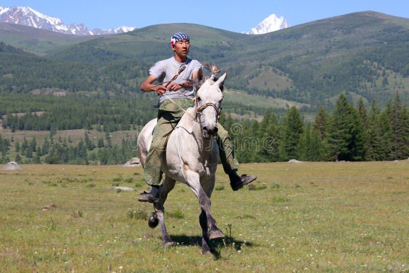 Sul horseback attraverso la steppa immagine stock