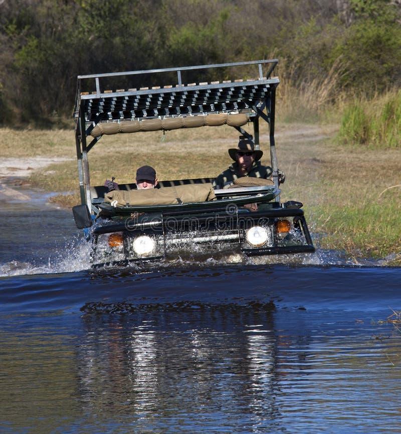Sul safari nel delta di Okavango - Botswana fotografia stock libera da diritti
