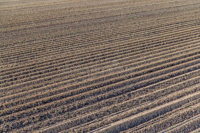 Sulco de um campo arado fotos de stock