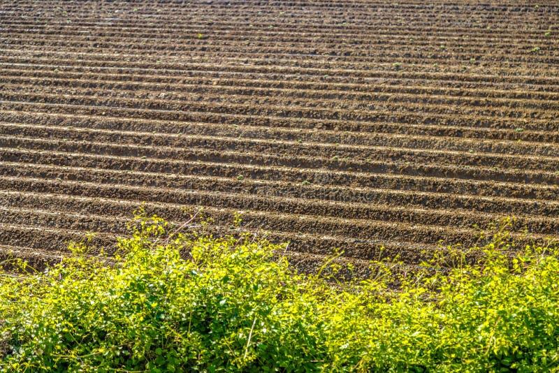 Sulco de um campo arado foto de stock