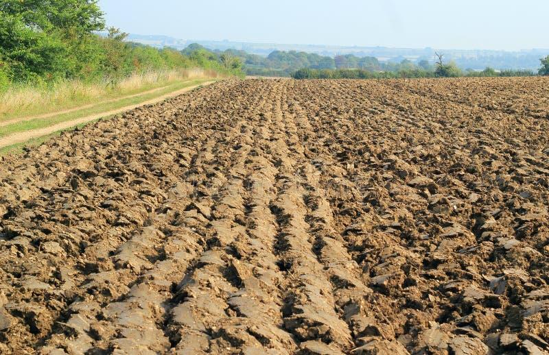 Sulco retos em um campo arado ou arado fotos de stock