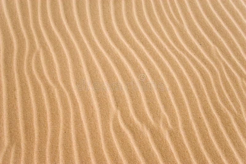 Sulcos dourados da areia imagens de stock royalty free