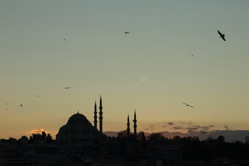 Suleymaniye moské på solnedgången, istanbul, TURKIET royaltyfri fotografi