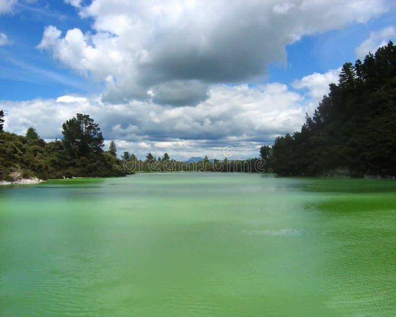 Sulfure el lago en Rotorua, NZ. foto de archivo libre de regalías