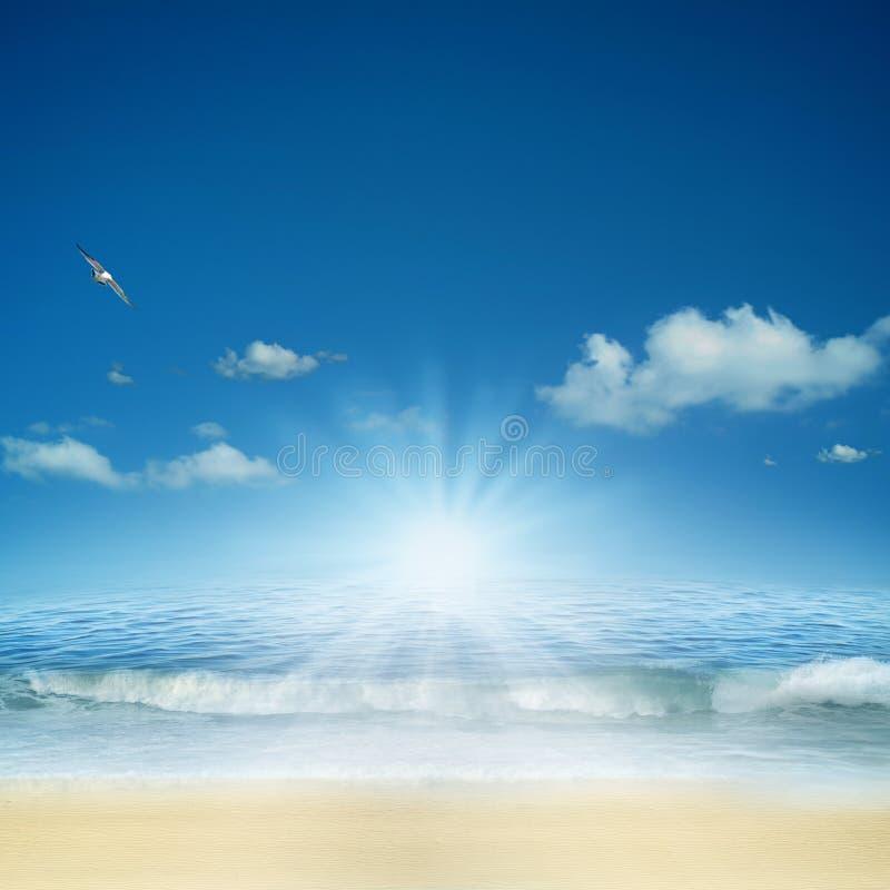 Sull'oceano. fotografie stock