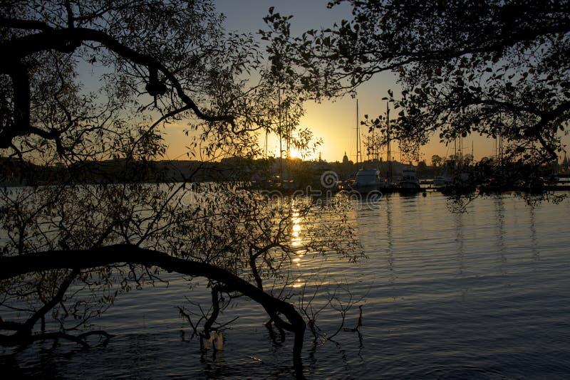 Sulla mia passeggiata nel tramonto a Stoccolma fotografia stock
