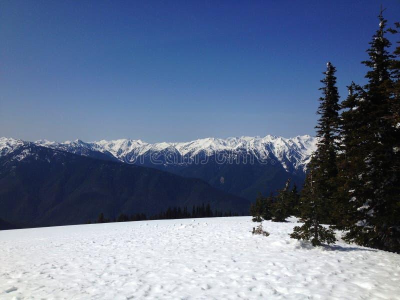 Sulla montagna fotografia stock libera da diritti
