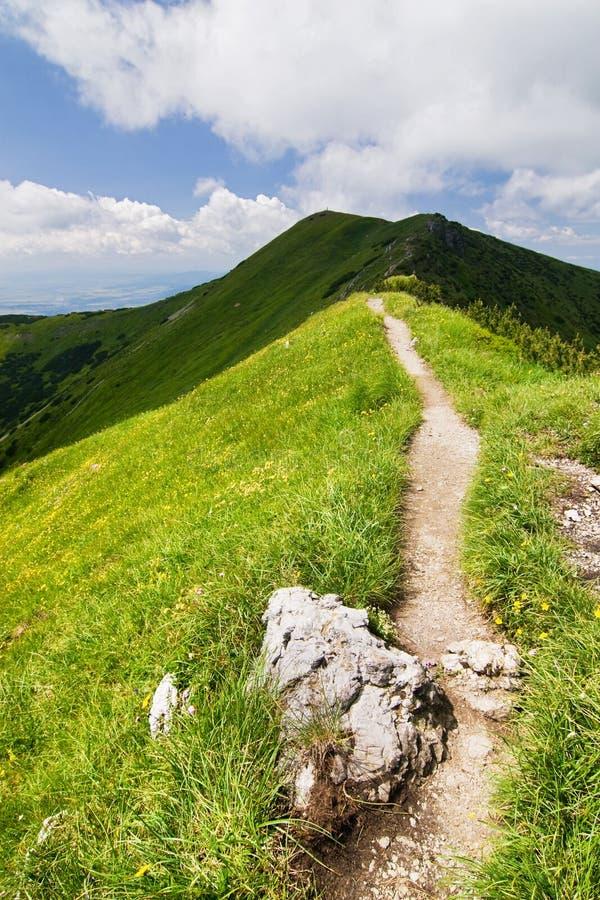 Sulla montagna-cresta immagine stock