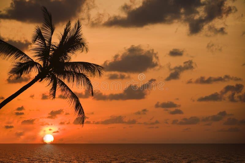 Sulla sogno-spiaggia fotografia stock libera da diritti
