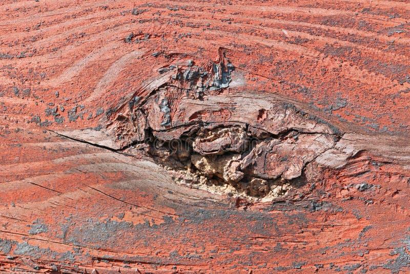 Sulla superficie piana del bordo di legno rosso è una traccia da una r fotografie stock libere da diritti