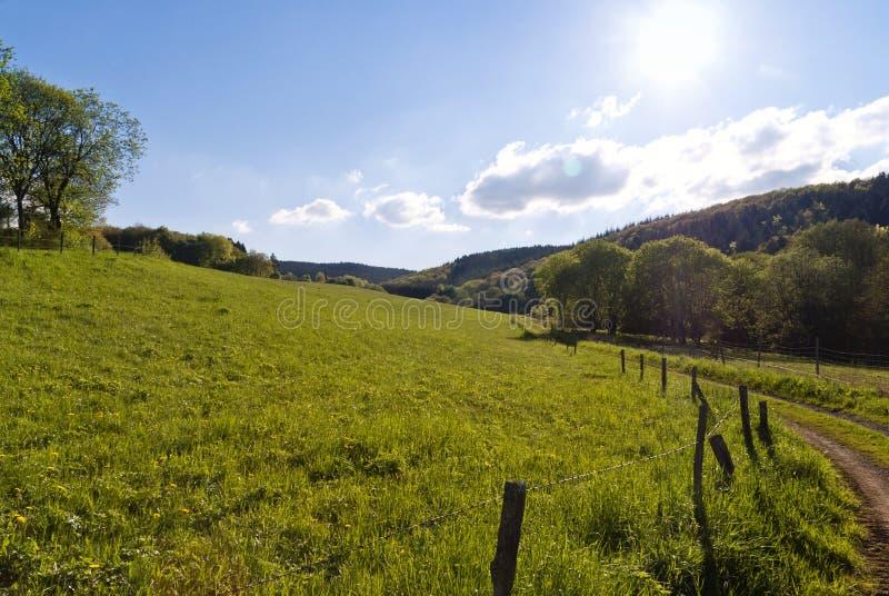Sulla traccia di escursione Eifelsteig immagini stock libere da diritti