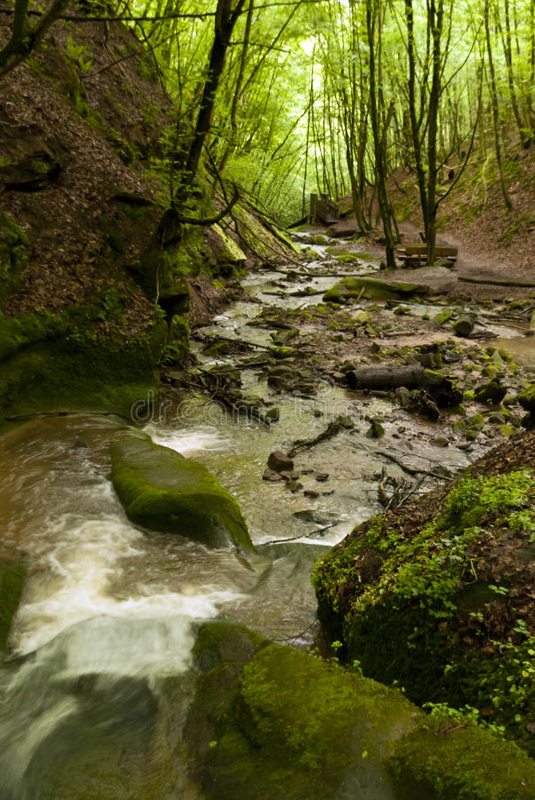 Sulla traccia di escursione Eifelsteig immagine stock