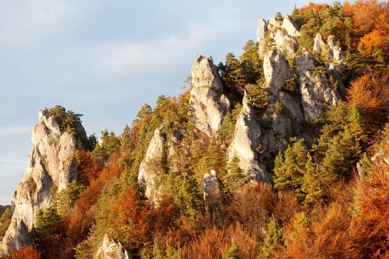 Sulov-Felsen im Herbst, Strazov-Berge, Slowakei stockfotografie