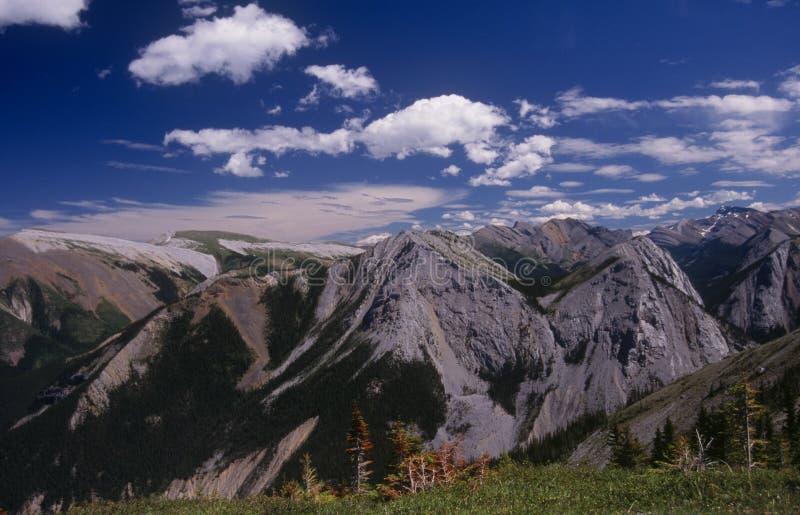 Download Sulphur Skyline Hike, Jasper National Park Stock Image - Image of view, rockies: 5658617