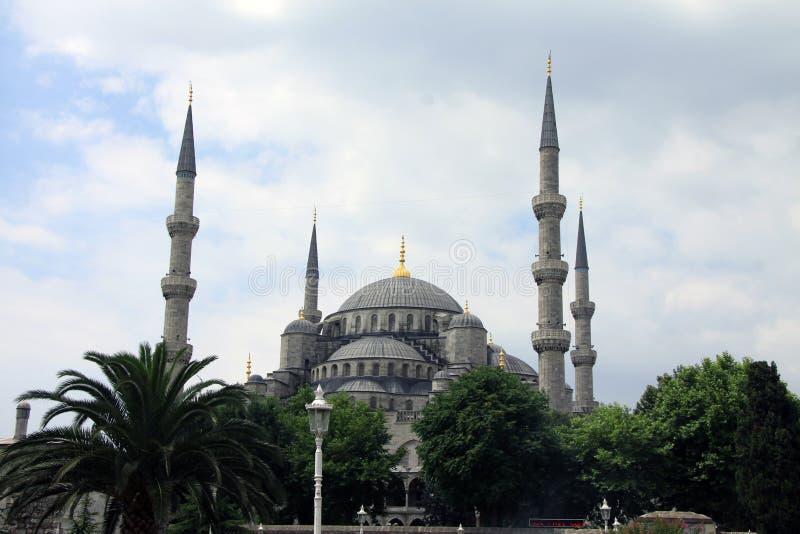 Sultan Ahmed Mosque 3 royaltyfri bild