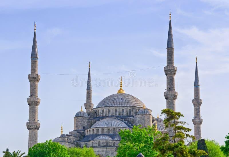 Sultan Ahmed Mosque i Istanbul kalkon royaltyfria foton
