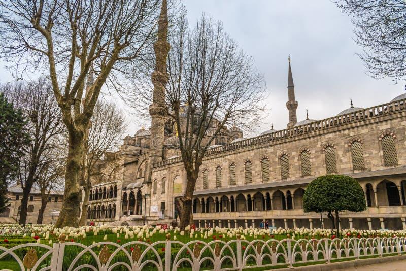 Sultan Ahmed Mosque/mesquita azul, Istambul, Turquia imagem de stock royalty free