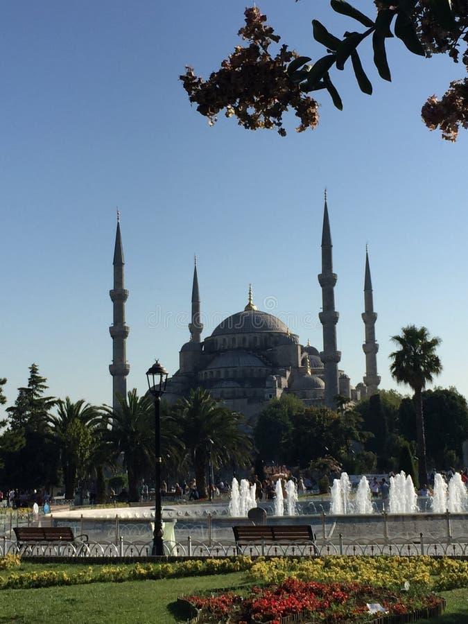 SultanAhmed - den blåa moskén i Instanbul royaltyfri fotografi