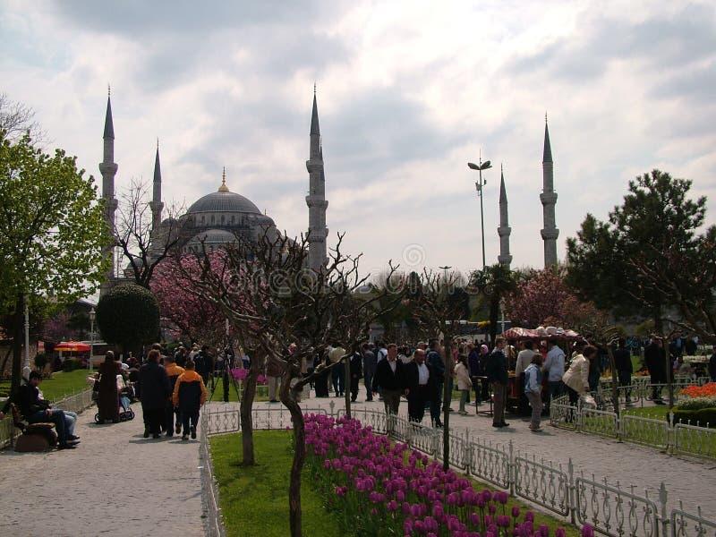 Sultanahmet大道和清真寺 免版税图库摄影