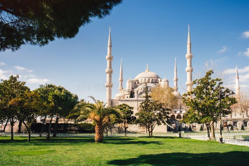 Sultanahmet błękitny meczet przy wschód słońca, Istanbuł, Turcja obrazy stock
