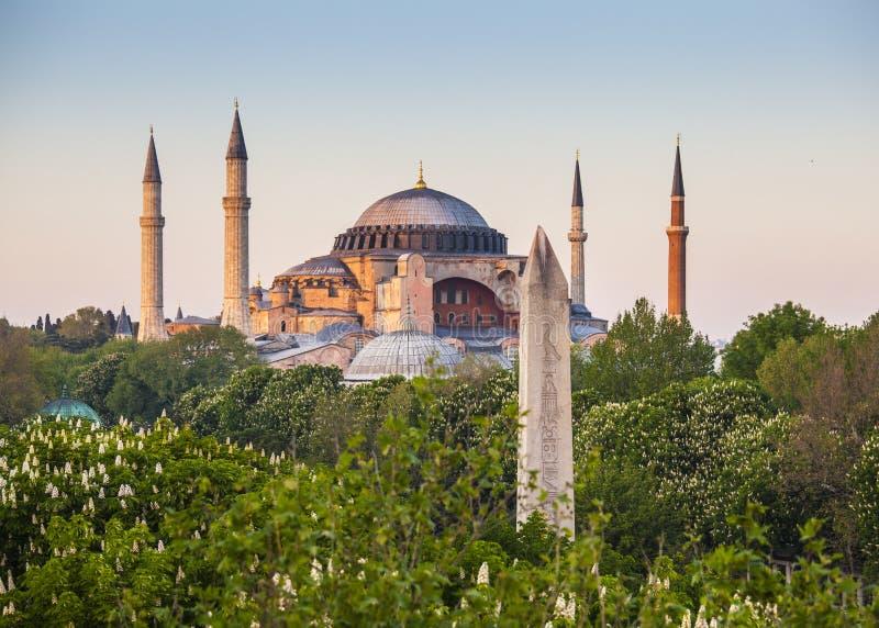 Sultanahmet Camii/蓝色清真寺,伊斯坦布尔,土耳其 库存图片