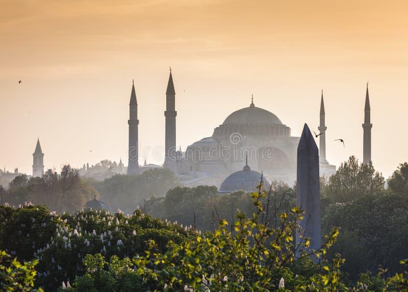 Sultanahmet Camii/mesquita azul, Istambul, Turquia fotos de stock royalty free