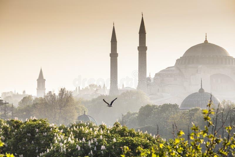 Sultanahmet Camii/mesquita azul, Istambul, Turquia foto de stock